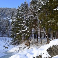 Зима на Алтае :: Tatiana Lesnykh Лесных