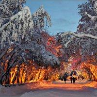 Североморск в Новогоднем интерьере :: Кай-8 (Ярослав) Забелин