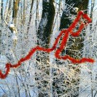 Приметы новогодья.. :: Андрей Заломленков