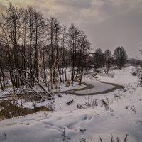 Четвёртый день нового года :: Андрей Дворников