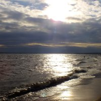 Финский залив :: Андрей Кротов