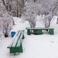 Опустели до весны скамейки... :: Наталья