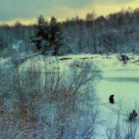 На лесной реке :: Николай Масляев