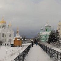 Серафимо-Дивеевский монастырь :: Александр Лукин