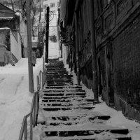 по зимней лесенке :: Наталья Сазонова
