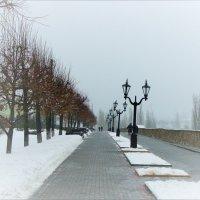 Туманная аллея :: °•●Елена●•° ♀