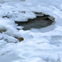 А там внутри течет река... :: Нина Сигаева