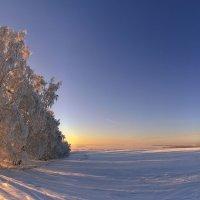 Всё тихо кругом и снег, он всюду :: Сергей Жуков