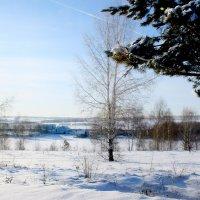 Зимы  картины... :: Валерия  Полещикова