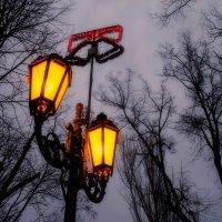 Вечерний фонарь :: Елена Данько