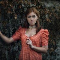 Provence :: Viktoriya Vik