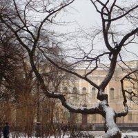 На пл. Искусств. :: Марина Харченкова