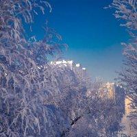 зима в Москве. :: Валерий Гудков