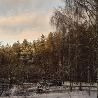 Вид из окна :: Валерий Чернов