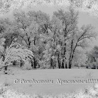 Рождественская картинка. :: Наталья Юрова