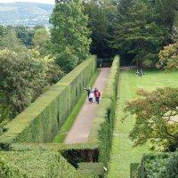 Растительный коридор в саду Замка Пауис :: Natalia Harries
