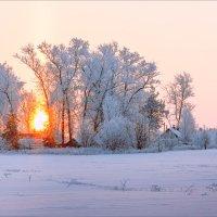 Зимнее утро... :: Александр Никитинский