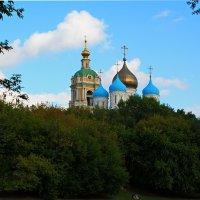 Вид на Храм :: Николай Дони