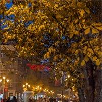 Последняя осень. :: Андрей Козлов