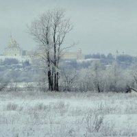В морозный день! :: Владимир Шошин