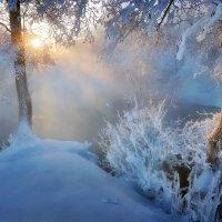Сияние Рождества..... :: Андрей Войцехов