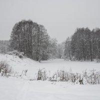 Пейзаж с падающим снегом :: Михаил Онипенко