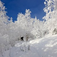 Вершина близко!!! :: Светлана Игнатьева