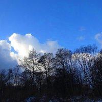 Январское небо :: Маргарита Батырева