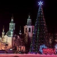 Новогоднее настроение :: Николай Ларигин