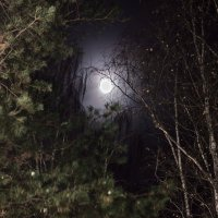 Луна :: Николай Ларигин