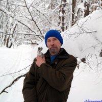 Хорошо в зимнем лесу! :: Андрей Заломленков