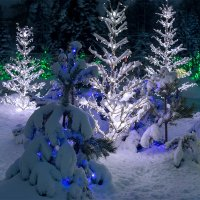 Накануне Рождества :: Алексей Головин