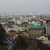 Купола, крыши и китайский фонарик. :: Svetlana