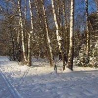 Рождественский мороз в Москве :: Андрей Лукьянов