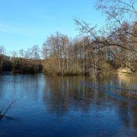 Озеро в январе :: Nina Yudicheva