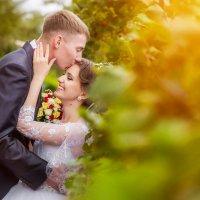 свадебный день :: Елена Сметанина