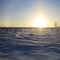 Зима!!! :: Людмилаfdnjgjhpnhptn