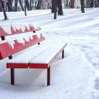 В парке... :: Елена Данько