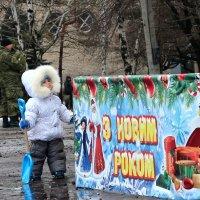 ... и там снега нет... :: Сергей Касимов
