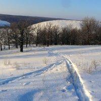 Обновить лыжню! :: Андрей Заломленков