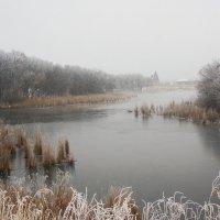 Зимний пруд :: Oksana