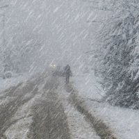 Снегопад на Рождество :: Владимир