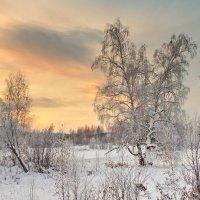 зимнее утро :: Александр