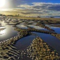 Северное море :: Полина Polli