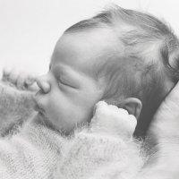 Новорожденные сны :: Валентина Илларионова (Блохина)