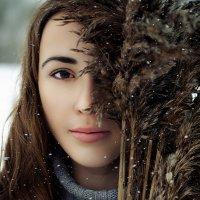 d368 :: Нина Чупрова
