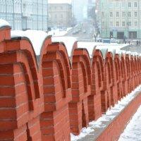 6.01.17 Кремль. Москва :: Пердимонокль