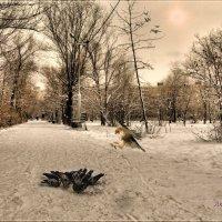Внезапность залог успеха в любой атаке. :: Anatol Livtsov