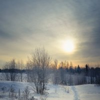 Навстречу солнцу... :: Федор Кованский
