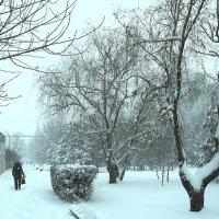 А снег идёт ... :: Natali